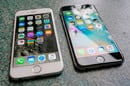 Apple iPhone 6 and 6s