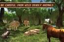 Screenshot from 'Life of Horse - Wild Simulator'