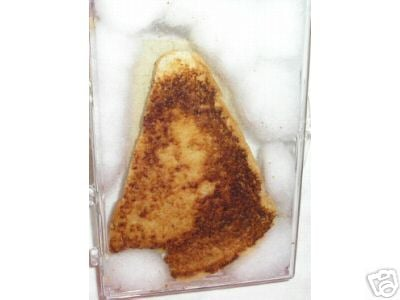 Virgin Mary in Grilled Cheese