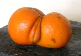 Comedy porn citrus fruit