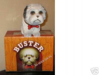 Buster Dog