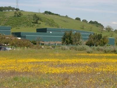 Shot of IBM's Almaden center
