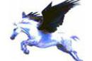 Pegasus email lrg