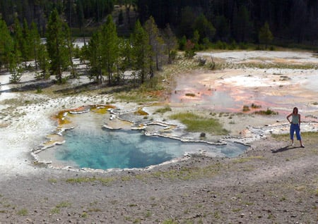 Colourful microbial mats in Octopus Spring in Yellowstone National Park. Credit: David Strong, Penn State University