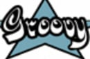 cropped groovy logo 2