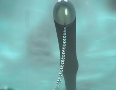 The 'Anaconda' wave power device