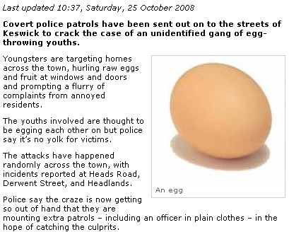 News and Star article containing a photo of an egg captioned An egg