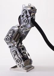 Oki robot leg