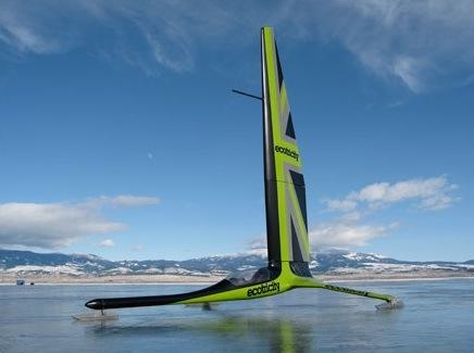Greenbird on ice