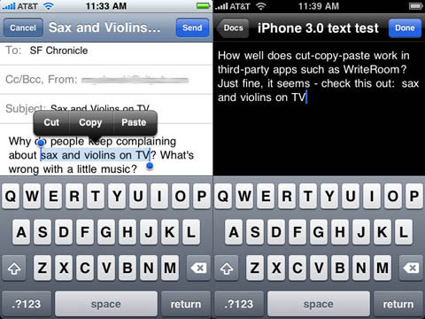 iPhone 3.0 cut, copy, and paste between apps