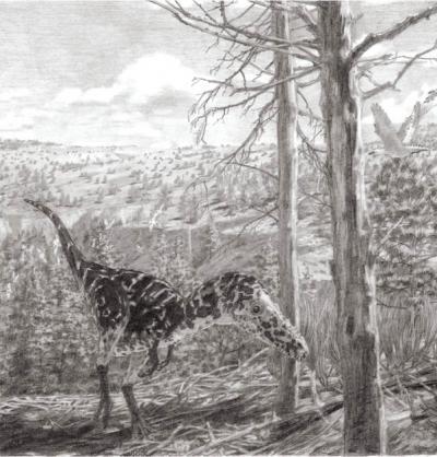 A altai, the new horny lightweight tyrannosaur. Credit: Jason Brougham