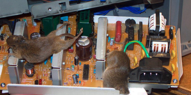 Two dead mice fried by printer power supply