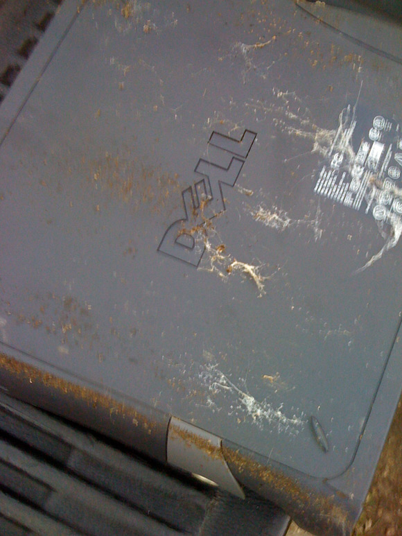 The rather disgusting case of a Dell PC