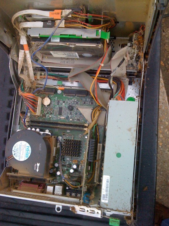 The inside of the Dell, with spider webs, dead cockroaches and roach crap