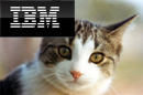 IBM logo and cat