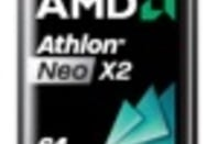 AMD Neo X2