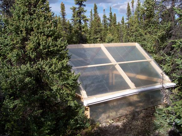 Researchers started a greenhouse warming experiment in Alaska's boreal forest in 2005. Credit: Steven D Allison