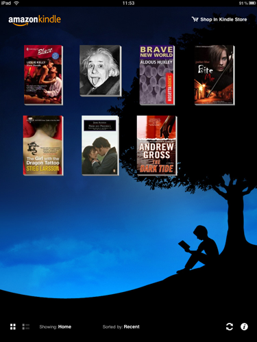 iPad Apps - Kindle