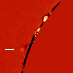 Hydrogen-alpha observations of the Sun's edge from the Coronado instrument of the Mauna Loa Solar Observatory showing what the authors believe to be the comet approaching the solar limb.