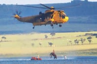 Sea King lifts horse from mud. Pic: RAF