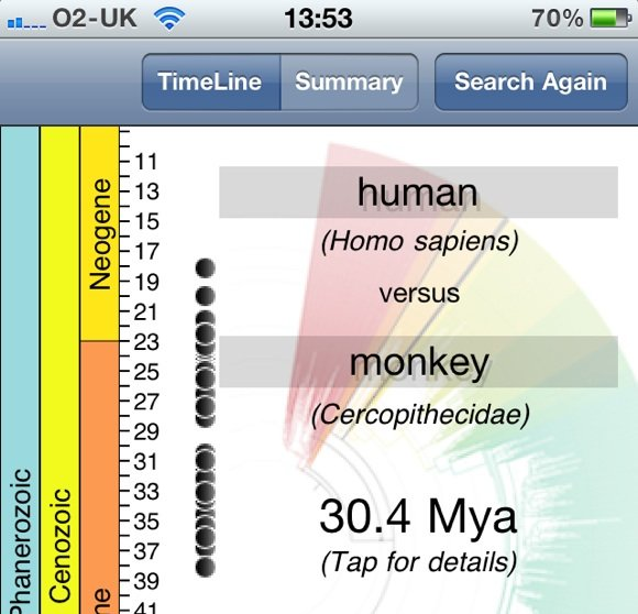 Screenshot from the Timetree app revealing that humans are related to monkeys.