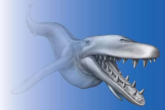 Basilosaurus Isis concept pic. Credit: UM