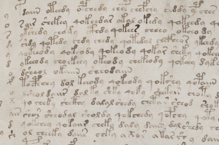 Text from the 'Voynich manuscript'