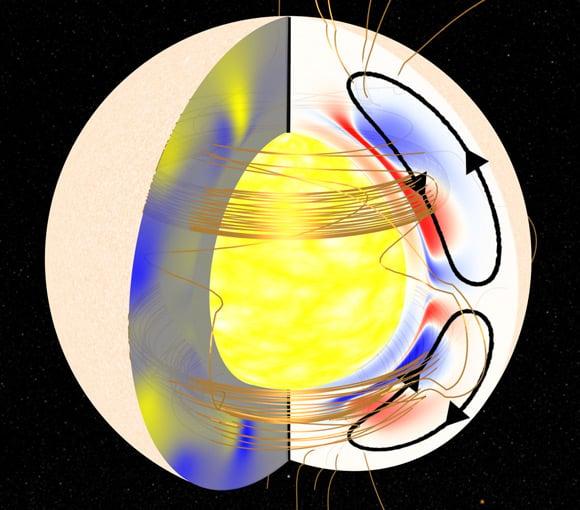 Cutaway graphic of the Sun showing the Great Conveyor Belt. Pic: Andrés Muñoz-Jaramillo