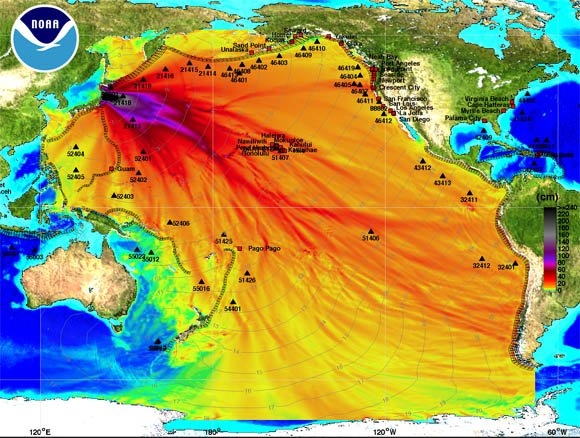 NOAA energy plot of Honshu tsunami