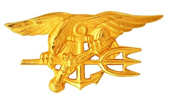 The chest badge worn by qualified US Navy SEALs, aka 'Budweiser badge', Trident badge etc. Credit: US Navy