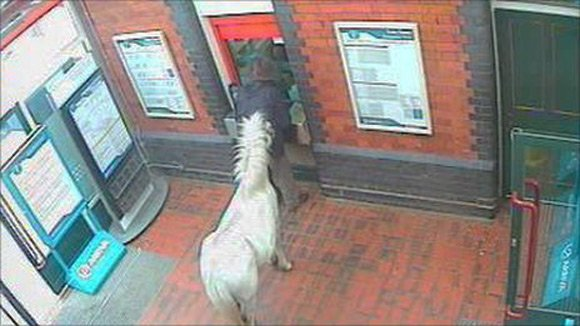 The man attempts to buy tickets for him and his pony