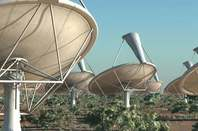 SKA antennas close-up - artist's impression