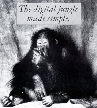 DIE digital jungle promo pic