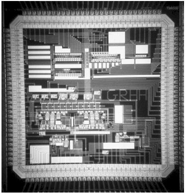 MIT neuron chip