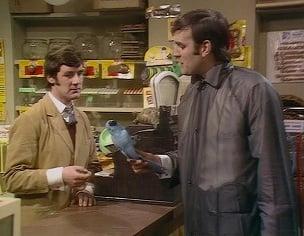 Monty Python Norwegian Blue dead parrot sketch