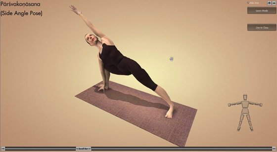 Interactive Yoga DVD