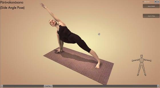 Interactive Yoga DVD