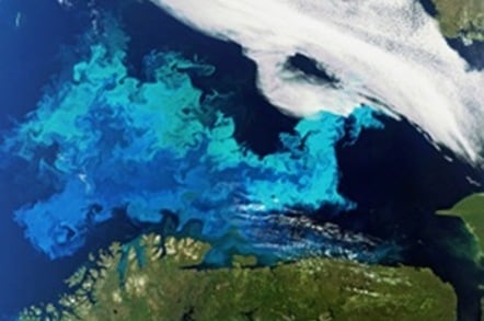 Phytoplankton bloom captured by Envisat