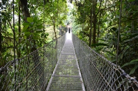 bridge_channel