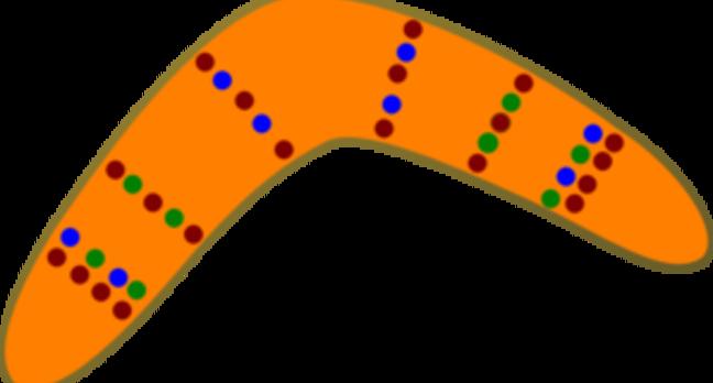 A boomerang