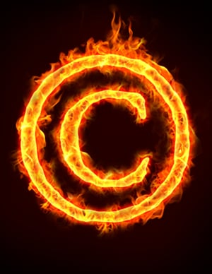 shutterstock_copyright_theft_burn must credit and link to shutterstock