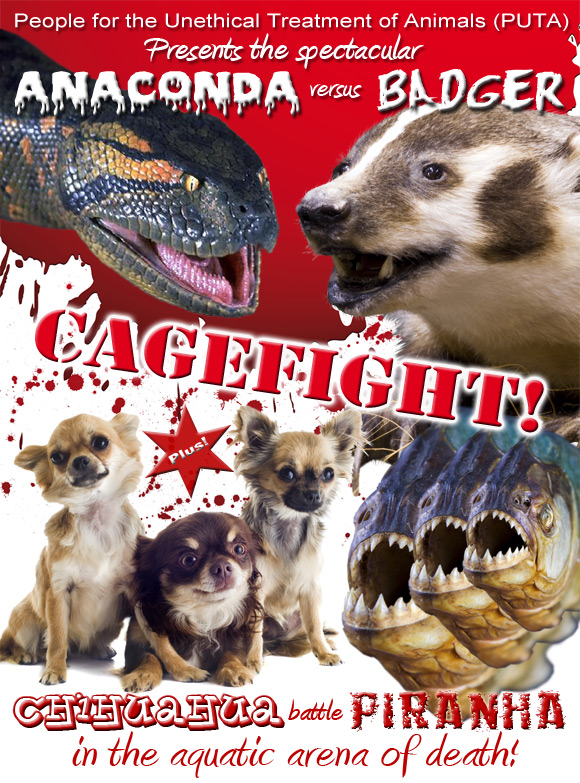 Our promotional poster for an anaconda versus badger cagefight