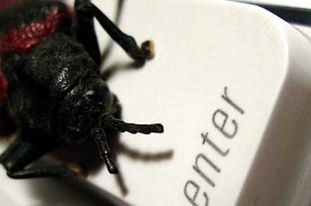 bug on keyboard