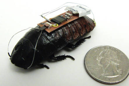 Computer cockroach