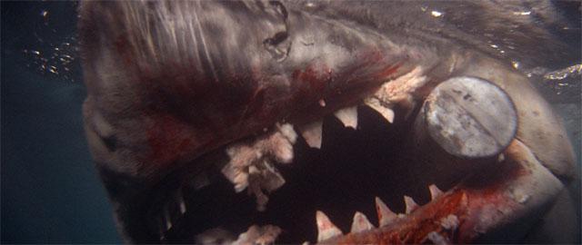 Jaws on Blu-ray disc