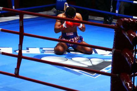 Boxer defeated. Pc credit: Sergey Barkov via SXC