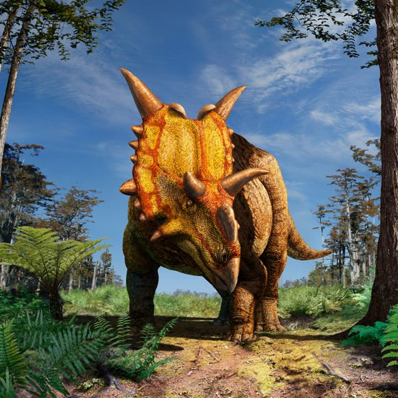 Artist's impression of Xenoceratops