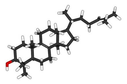 Lanosterol 3D stick model