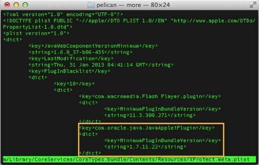 Apple's block on Java