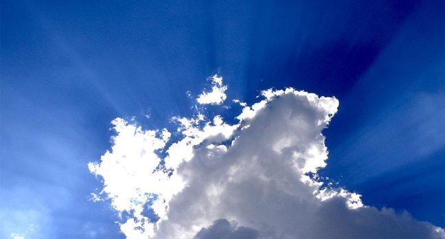 management cloud4
